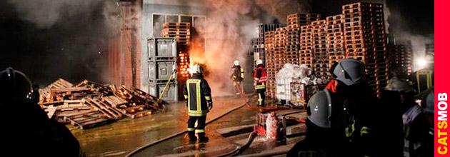 Несчастный случай на Химическом заводе