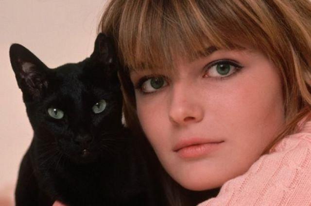 Знаменитости - любители кошек
