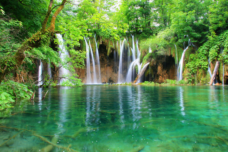 Естественная Природная Красота