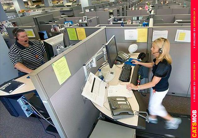Сумасшедшие Автоматизированные рабочие места