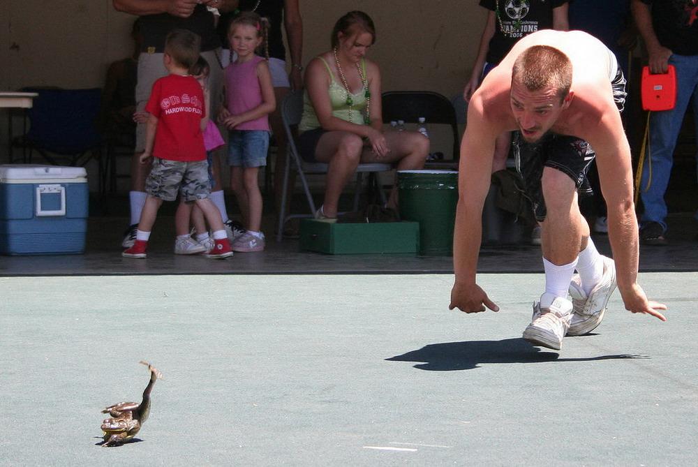 Соревнование прыгающих Лягушек в Калифорнии