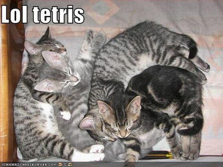 Тетрис как стиль жизни