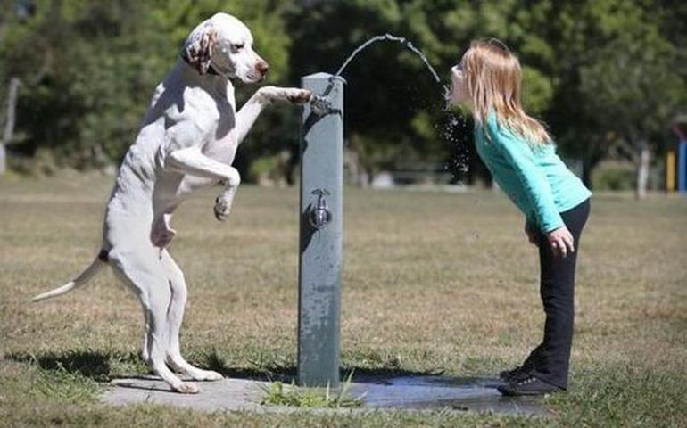 Смешные фото с детьми