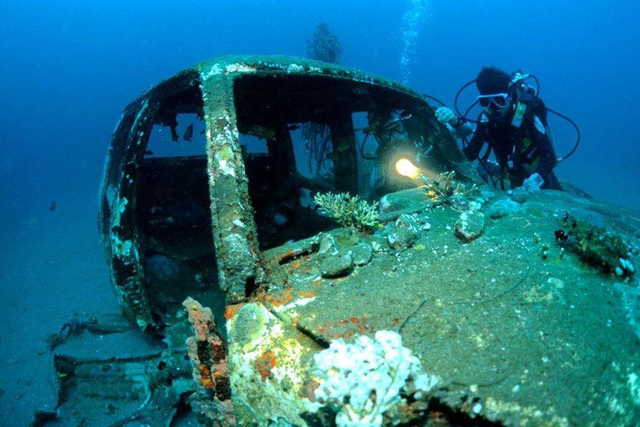 Коралловые рифы из старых Авто