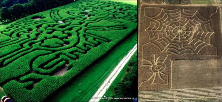 Удивительные рисунки и фигуры на полях