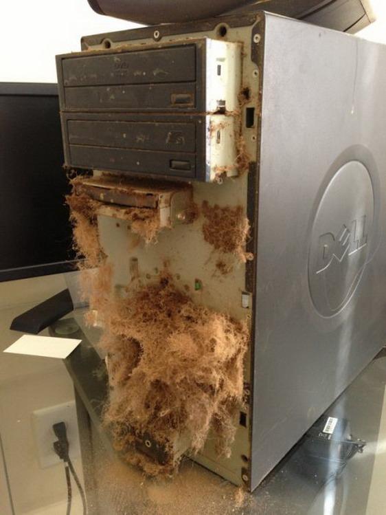 Убитые компьютеры