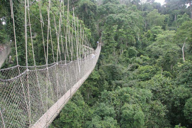 Опасные мосты
