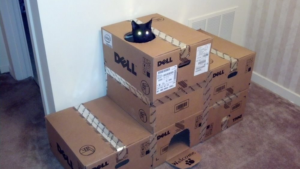 Домики для кошек из коробок своими руками видео