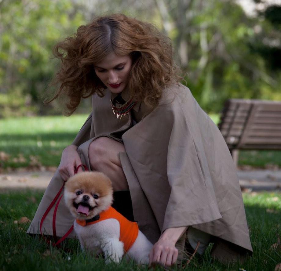 Boo – самая симпатичная собака в мире