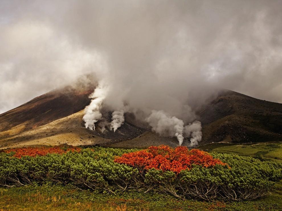 Лучшие фотографии National Geographic