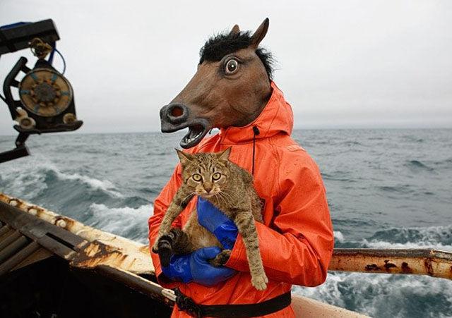 Horseplay на рабочем месте