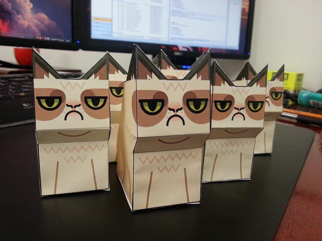 Обустройство офиса с grumpy cats