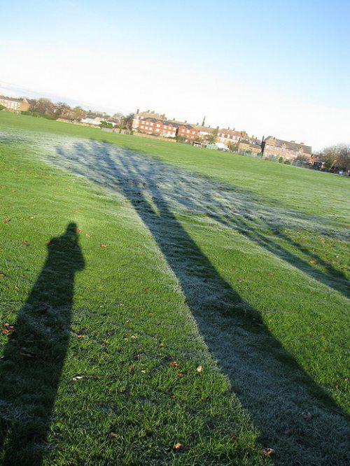 Ледяные тени