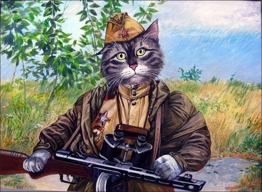 Эпические коты