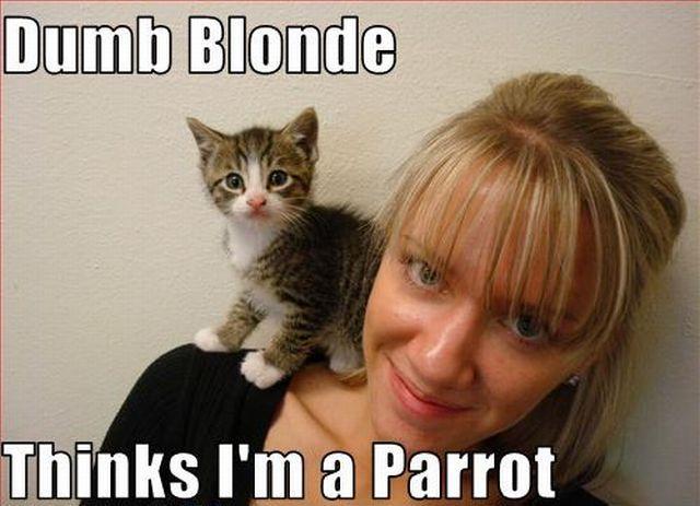 Фейлы блондинок