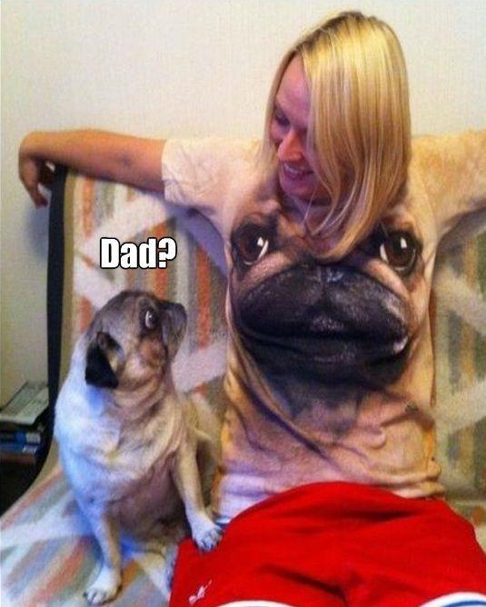 смешные и интересные фото