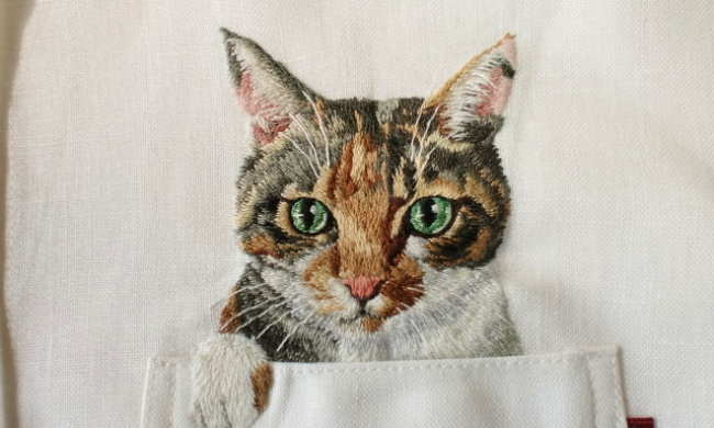 Котик из кармашка