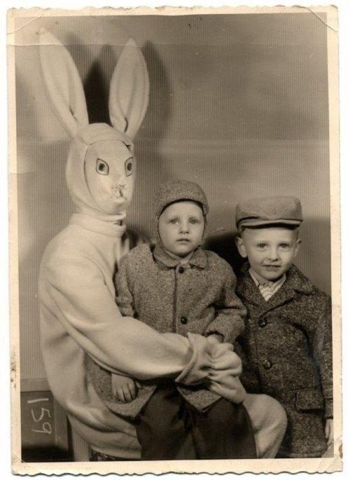 Самые жуткие пасхальные зайцы
