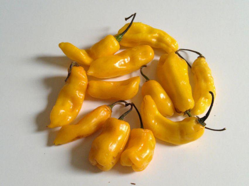 Рейтинг остроты перца чили