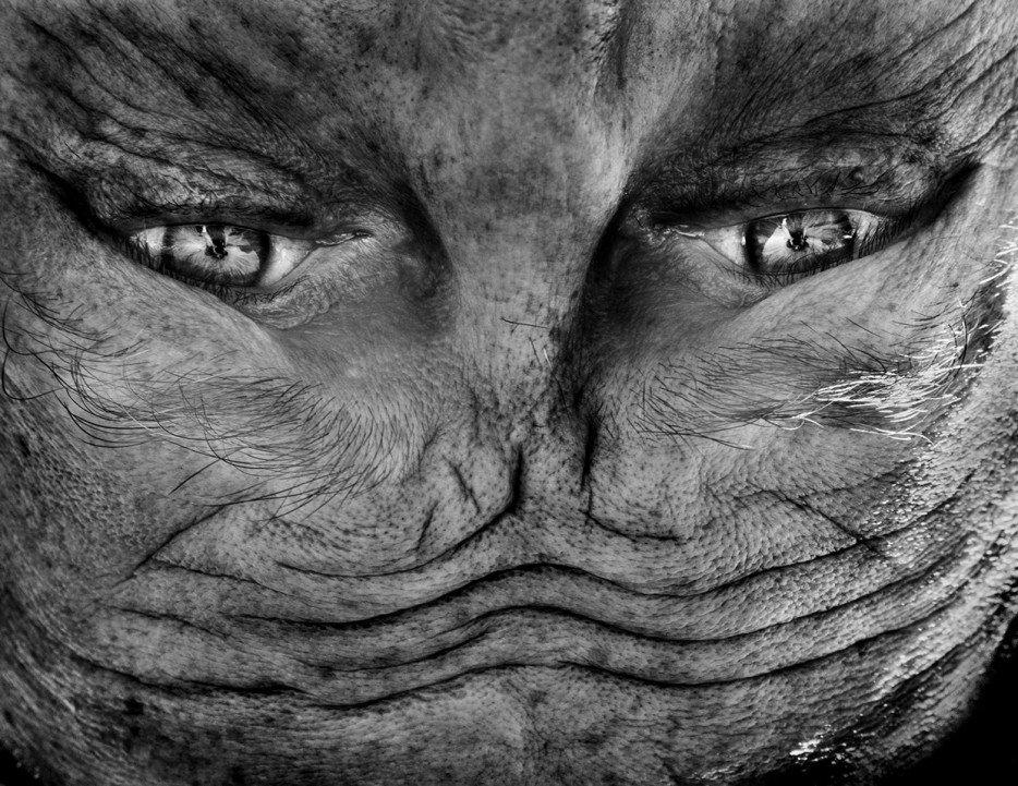 Инопланетно-человеческие портреты